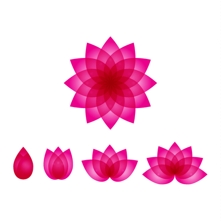 A beautiful pink lotus vector set, lotus icons water lily flowers illustration.