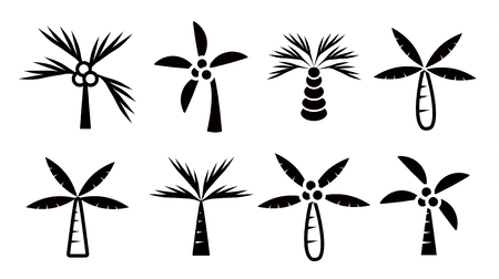 coconut trees icon set vector on white background, palm tree collection