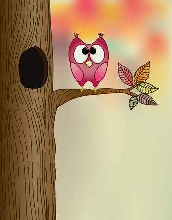 cute owl on a tree in autumn