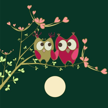 owls in love on branch  Illustration