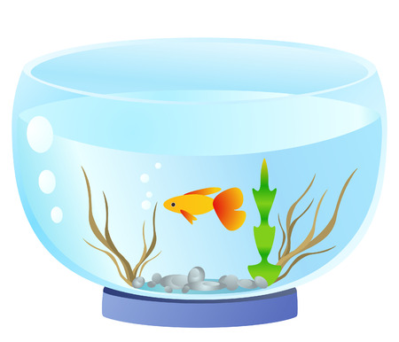 aquarium Stock Vector - 8198348