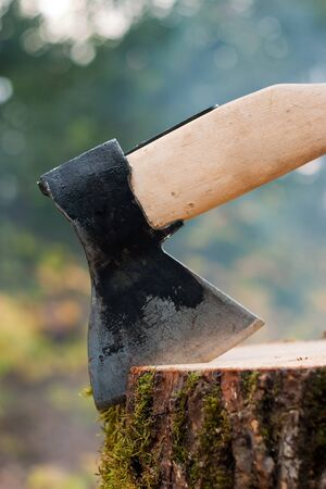 old type of axe on log photo