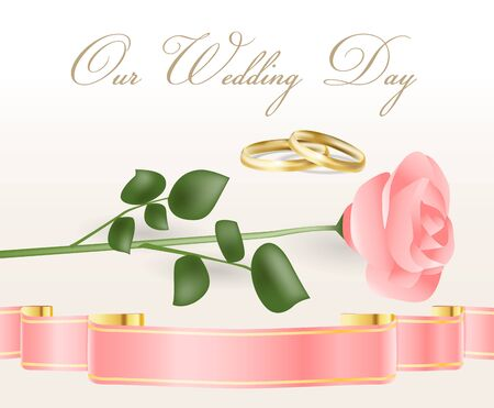 pink rose and wedding rings Vector
