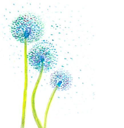 dessin au trait: aquarelle pissenlit fond abstrait Illustration