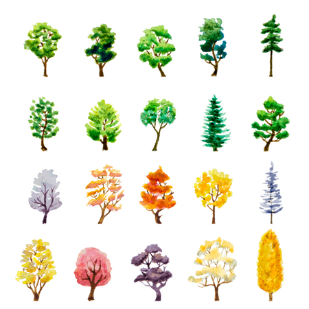 water color: set of trees on white
