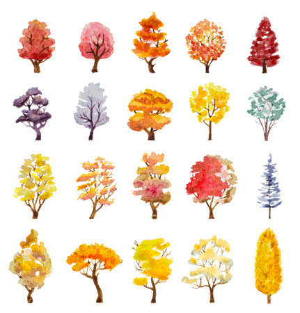 autumn garden: set of autumn trees Illustration