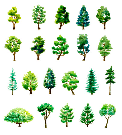 set of watercolor hand drawn different trees