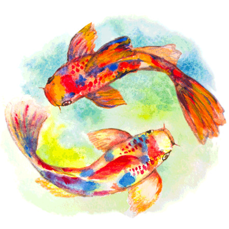 fishes: watercolor hand drawn koi fishes