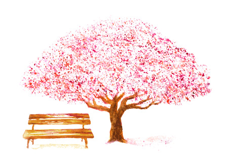 watercolor hand drawn cherry tree and bench on white Ilustração