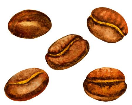 coffee bean: watercolor coffee beans set