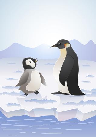 seabird: penguins on icy landscape. vector cartoon illustration Illustration