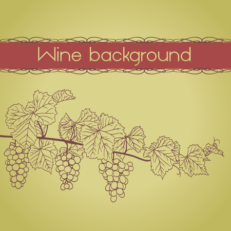 wine growing: wine background with grapevine outline with grapes