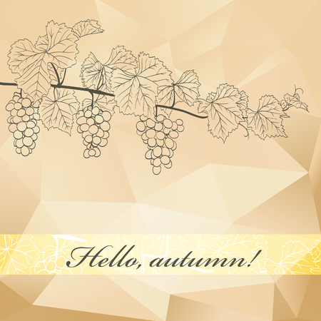 viticulture: wine polygonal background with grapevine and grapes outline