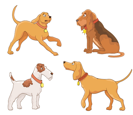 bloodhound: set of cartoon dogs. vector