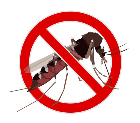 no mosquito: No Mosquito sign. Mosquito crossed by red line, stop mosquito sign. Illustration on zika virus theme, insect control design element. Illustration