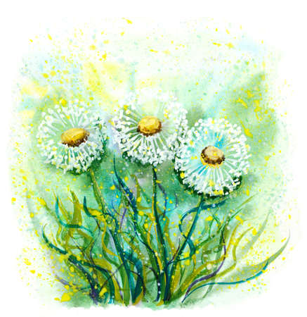 watercolor abstract dandelions illustration with hand painted blots Stock Photo