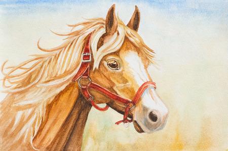 light brown horse: watercolor horse head illustration