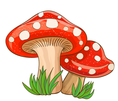 Cartoon rode paddestoelen en gras op wit. Vector illustratie Stock Illustratie