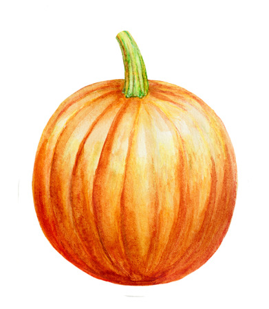 hand drawn watercolor pumpkin isolated on white background Stock Photo