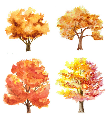 autumn tree: set of watercolor hand drawn autumn trees isolated on white