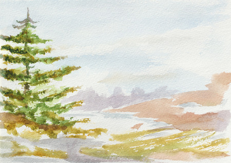 fir tree: natural landscape with fir tree. hand painted watercolor illustration Stock Photo