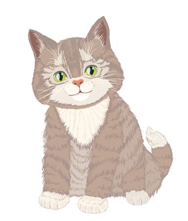 Mignon petit chat pelucheux sur blanc. vecteur Vecteurs