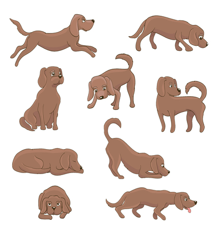 cartoon dog in different poses on white. funny pet sitting, standing, running, waiting, lying, playing. vector illustration