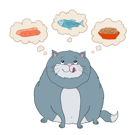 aliments droles: Funny cartoon fat cat thinking about sausage, fish, food. vector