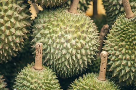Closeup of fresh durian in the market in Kuala Lumpur, Malaysia