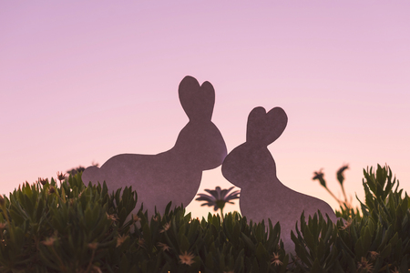 Creative photo of two silhouette paper rabbits in the chamomile flowers and green grass on the sunset sky background. Concept