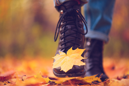 Yellow leaf stuck to the women's shoe during a walk through the autumn forest. Indian summer season