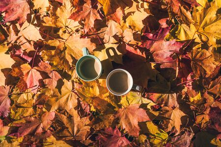Two cup of coffee standing on the ground with maple leaves in the autumn forest. Aerial view