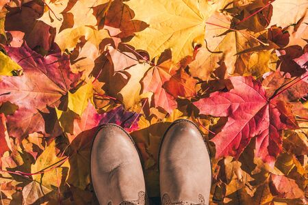 A girl in a boots walks through the autumn forest or parkland. View of womens legs in the multi-colored foliage in the Indian summer season