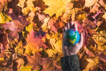 Close up of a small globe in a female hends on colorful maple leaves background. Autumn forest. Concept. Selective focus. Russia, Europe, Asia, Africa. indian summer