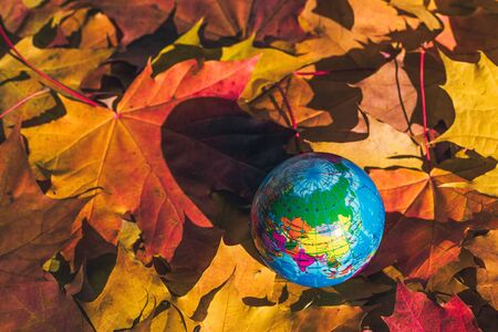 Close up of a small globe lies on colorful autumn maple leaves in the autumn forest. Concept. Selective focus. Russia, Europe, Asia, Africa. indian summer