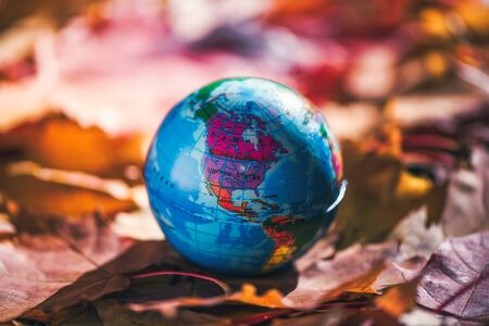 Close up of a small globe lies on colorful autumn maple leaves in the autumn forest. Concept. Selective focus.