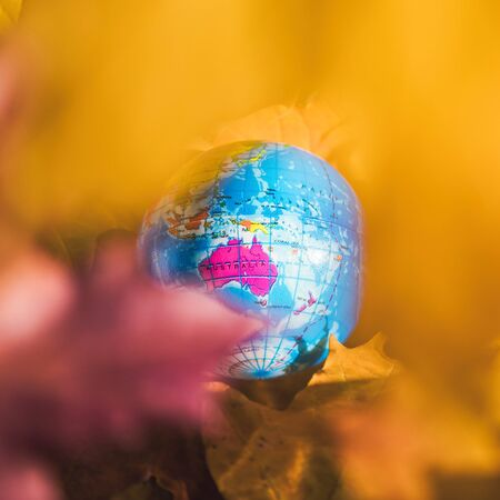 Close up of a small globe lies on colorful autumn maple leaves in the autumn forest. Concept. Selective focus. Australia. indian summer
