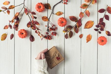 Woman packing gift in a box of kraft paper on white retro wood boards. leaves, rowan and small pumpkins. Thanksgiving. Autumn, fall concept. Flat lay, top view.