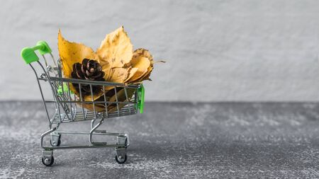 Green small toy shopping cart with leaves, cone on a concrete wall background. Autumn Concept.