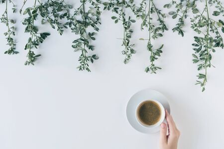 Female hands with a cup of coffee in branches with green leaves on a white table. Cofee art. Flat lay, top view. Banco de Imagens