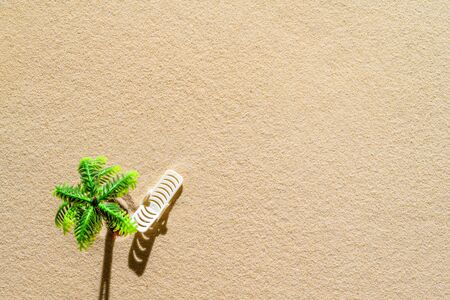Sunbed under the palm tree and  on a sandy beach. Aerial view. Summer and travel concept. Minimalism
