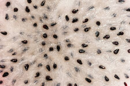 dragon fruit seeds texture and background. black-white