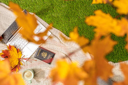 Autumn. Plaid, laptop and American passport, cup of coffee under tree, branch of maple leaves on the green grass in the park. Travel, booking concept. Top view