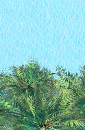 Aerial drone view from above on swimming pool and palm trees. Tropical summer luxury hotel. Vertical ratio, size