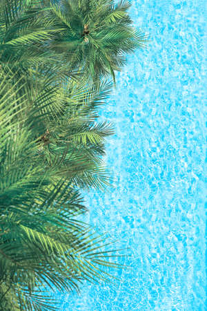 Blue transparent water surface of ocean, sea, lagoon with palm trees. Vertical background. Aerial, drone view