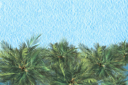 Blue transparent water surface of ocean, sea, lagoon with palm trees. Horizontal background. Aerial, drone view 免版税图像