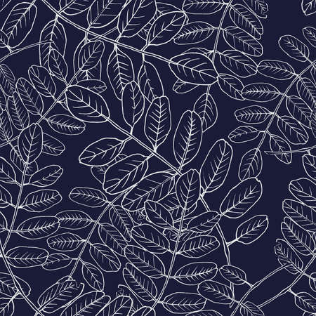 Seamless vector botanical pattern with hand-drawn acacia leaves. Spring leafy vintage floral background. Leaves and herbs. Background for textiles, fabrics, covers, wallpapers, print, wrapping gift