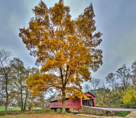 covered bridge: The Utica Mills covered bridge in Maryland during Autumn
