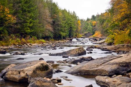 appalachian: Swallow Falls waterfall in the Appalachian mountains of Maryland