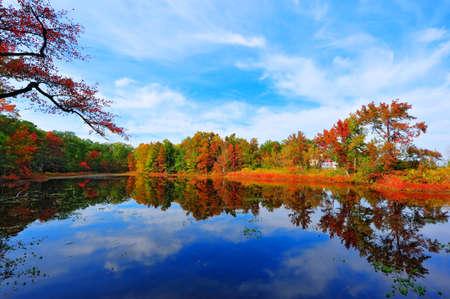 hojas de arbol: Foto de alto rango din�mico de colores del oto�o que refleja en un estanque al lado de la bah�a de Chesapeake en Maryland